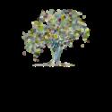 Willow Tree Kindergarten